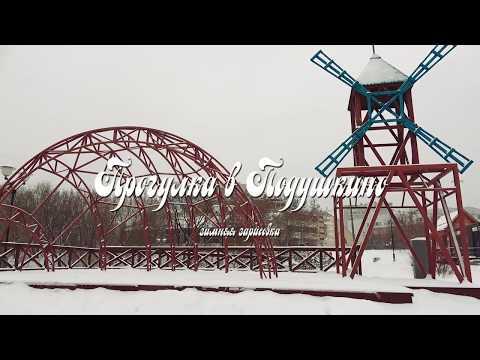 Прогулка в Подушкино (зимняя зарисовка)