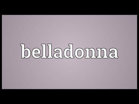 Belladonna Meaning