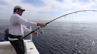 Nonton Panama 2015  Gulfenade Tonfiskar P   Speedjigging  Film Subtitle Indonesia Streaming Movie Download