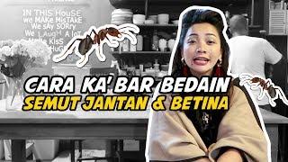 Video TANYA KA'BAR - Ka'bar Cuma Kasih Saran! MP3, 3GP, MP4, WEBM, AVI, FLV Mei 2019