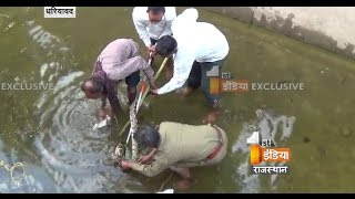 Dhariyawad India  city photo : A 9 meter long Ajgar found in Pratapgarh | First India News Rajasthan
