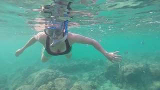 Aruba  Exploring the Island Beaches & Ocean & Food. We eat at Zeerovers, visit Baby Beach, then snorkel among an incredible...
