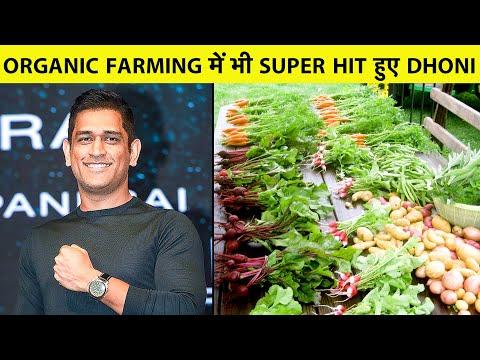 EXCLUSIVE REPORT: Dhoni के Farm House की सैर, Organic Farming में भी Success हुए MS Dhoni