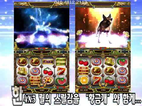 황금개포커(GoldenDog Poker)