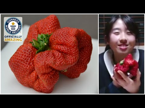 Heaviest strawberry Guinness World Records