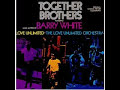 Love Unlimited Orchestra - The Theme From Together Brothers