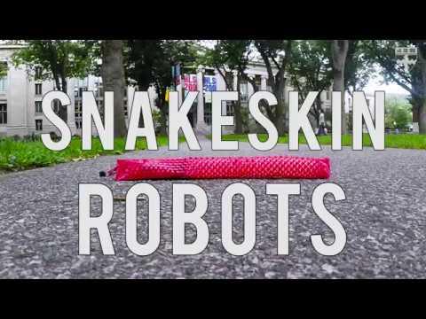 Snakeskin Robot
