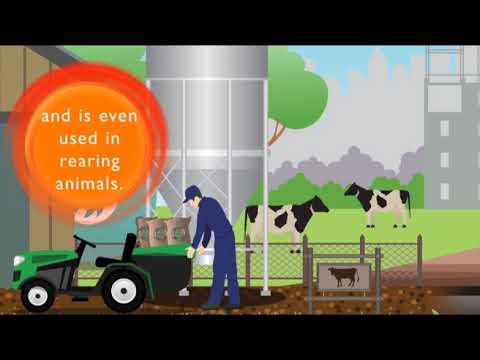 What is LPG for the Agricultural Sector