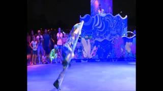 Some footage courtesy of SeaWorld Orlando of their new nighttime offering for 2017! Electric Ocean