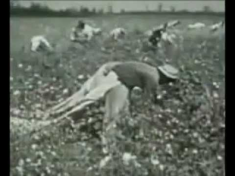 video shock: ecco come siamo schiavi senza accorgercene