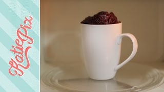 Chocolate Microwave Cake in a Mug Recipe | Katie Pix by Katie Pix