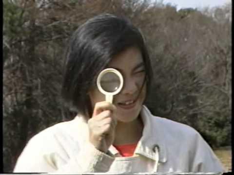 ふるさと相模原 1988年03月号