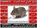 مكافحة الحشرات ومكافحة الحشرات والفئران.wmv