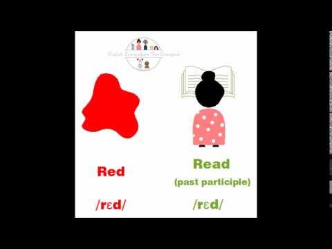 Red VS Read (past participle)