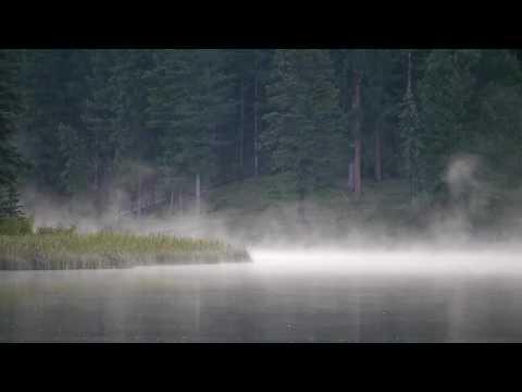 Моrning мisт - DomaVideo.Ru