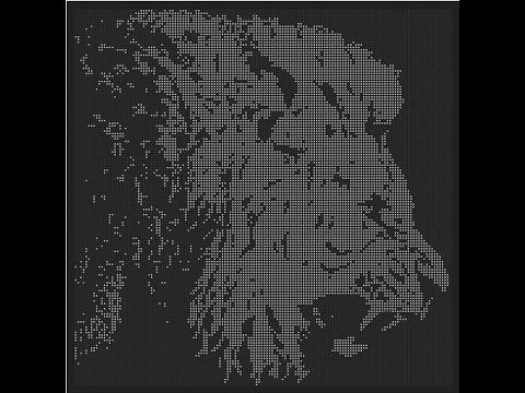 "Moonchild feat. Alpha Don – ""Raíces"" [Videoclip]"