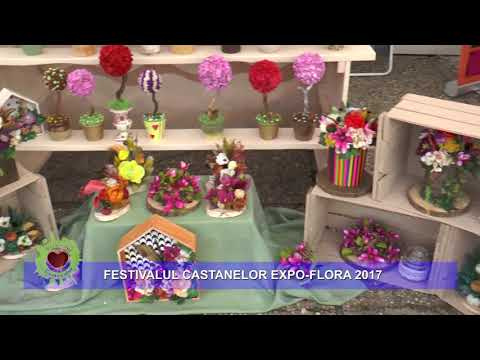 EXPO - FLORA 2017