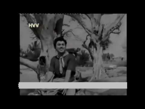 HDVidz in Kodekaru Chinnavaada     superhit video song  Mundadugu  1958
