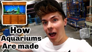 How Custom Aquariums are Made!!! by Tyler Rugge