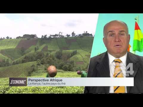 Production en hausse de thé noir au Kenya en 2016