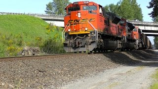 Marysville (WA) United States  City pictures : Cascades and Empty Coal Train at Marysville, WA 4K