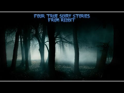 4 True Scary Stories From Reddit (Vol. 31)
