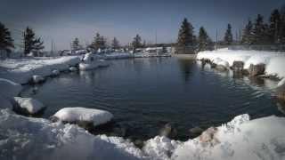 Le Bioparc en hiver