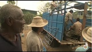 Video Panama: business in the jungle (full documentary) MP3, 3GP, MP4, WEBM, AVI, FLV Desember 2018
