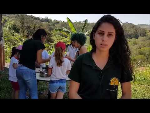 Reportagem Educação Ambiental