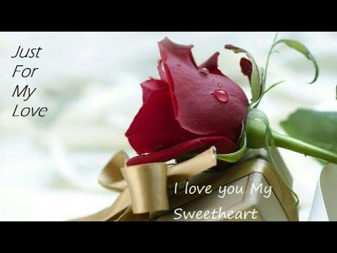 😘Valentine's Day Special Video For Husband & Wife lWhatsApp l Status l Wishes l Message😍