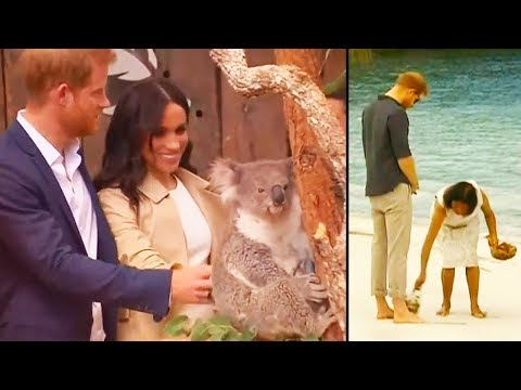Video Ozzy Man Reviews: Royal Tour [FEAT. Prince Harry and Meghan] download in MP3, 3GP, MP4, WEBM, AVI, FLV January 2017