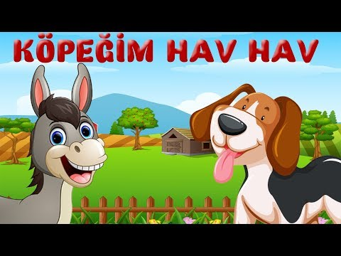 Köpeğim Hav Hav Der - Köpeğim Benden Ne İster