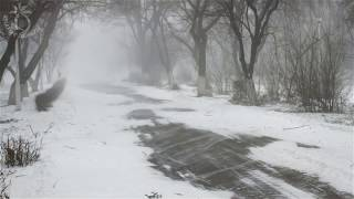 Nonton      Winter Storm Sound   Heavy Blizzard Snowstorm  Ambience   Howling Wind Sounds For Relaxation Film Subtitle Indonesia Streaming Movie Download
