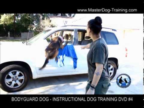 Bodyguard Dog Training – Instructional Dog Training DVD #4