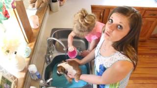 How to give a puppy a bath