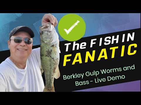 Berkley Gulp Worms and Bass