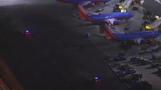 Police detain man dressed as Zorro just before airport panic