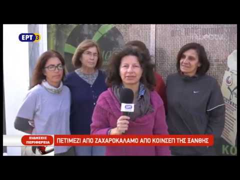 Πετιμέζι από ζαχαροκάλαμο στην Ξάνθη | ΕΡΤ