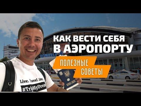 Первый полет на самолете: как вести себя в аэропорту в первый раз. Аэропорт Борисполь терминал Д - DomaVideo.Ru