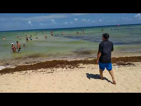 Playa del Carmen desde hotel Grand riviera princess 26/07/18