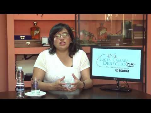 Prog 02 - Modificaciones en crimen organizado - Luces Cámara ... Derecho