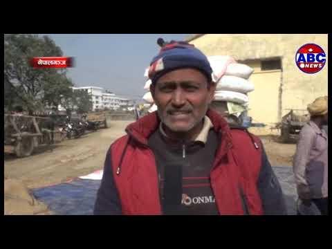 (ABC Report :- नेपाल खाद्य संस्थान अञ्चल कार्यालय भेरी नेपालगन्जले धान खरिद गर्न सुरु गरेको छ - Duration: 2 minutes, 41...)