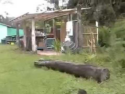 Hedonisia Hawaii Eco-Hostel Videosu