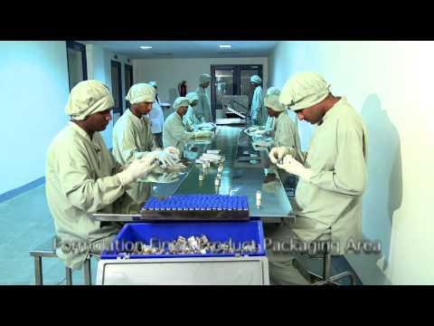 Rajasthan Antibiotic Limited Company Profile