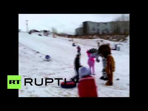 Russia: Man Beaten By Seven-foot Marty The Zebra, Alex The Lion And Luntik