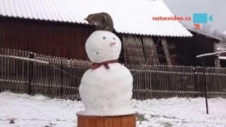 VIDEO DNE: První letošní sněhulák