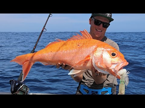 THE HUNT - EP 3 CATCHING RUBY SNAPPER  (DEEP SEA FISHING + SOUNDER BASICS + DEEP DROP RIGS)