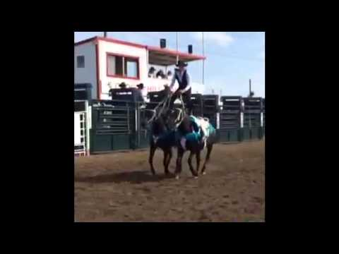 Young Gunz Trick Riding Team 2014