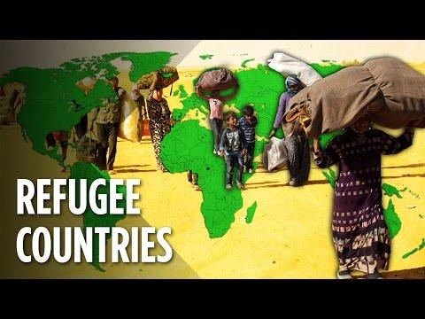 Které země hostí nejvíce uprchlíků?