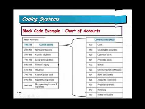 Accounting Information Systems- Lecture 1